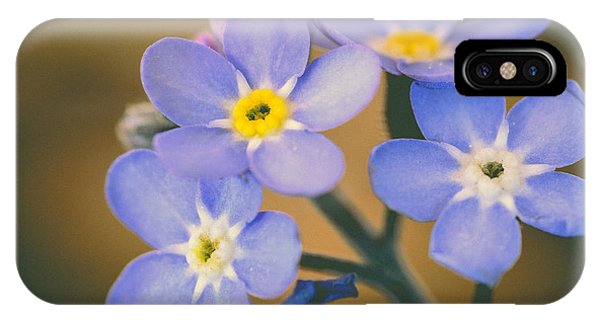 Close Focus Floral iPhone Case - Forget Me Nots by Marco Oliveira