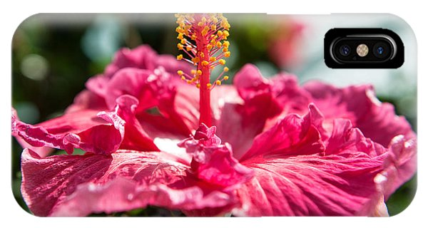 IPhone Case featuring the photograph Flower Closeup by Yew Kwang
