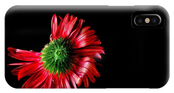 Flower Down IPhone Case