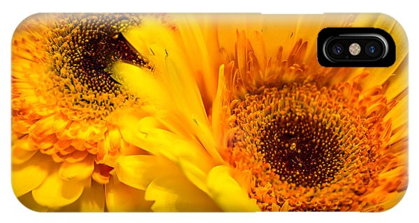 IPhone Case featuring the photograph Flower Eyes by Steven Santamour