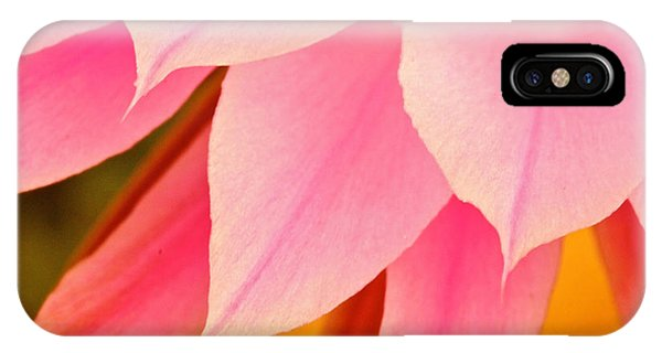 Flower Feathers IPhone Case