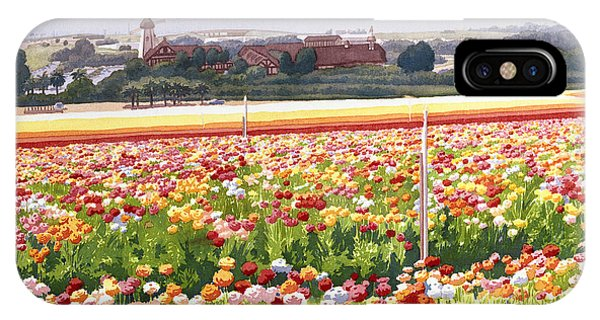 Flower Fields In Carlsbad 1992 IPhone Case