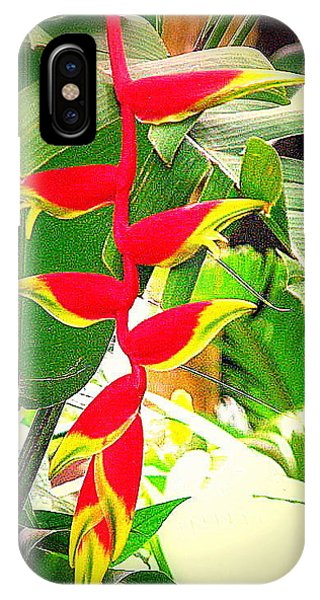 Flower In Monet's Garden Giverny France IPhone Case
