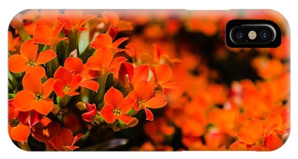 Flower Macro 1 IPhone Case