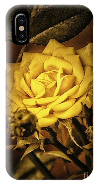 Flower Of Friendship  ... IPhone Case