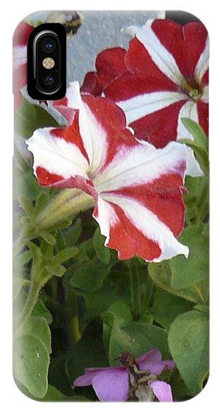 Flower Trios B IPhone Case