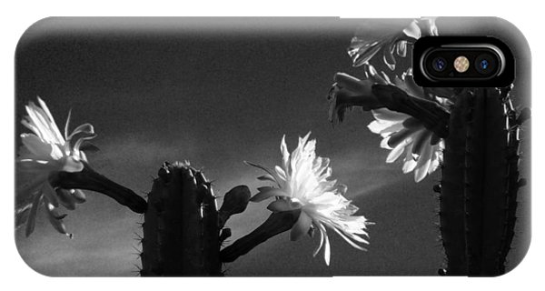 Flowering Cactus 4 Bw IPhone Case