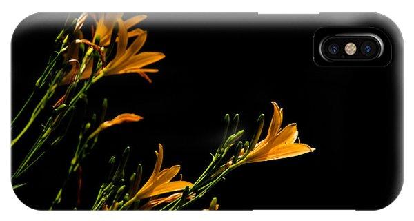 Flowering Golds II Phone Case by Kathi Isserman