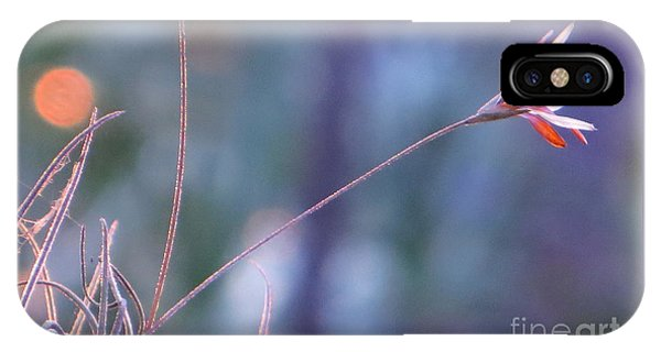 Flowering Moss IPhone Case