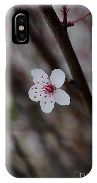 Flowering Plum 3 IPhone Case
