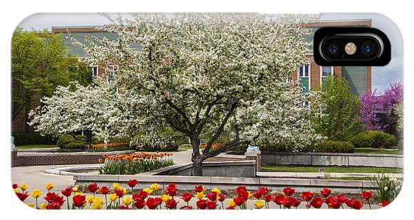 Michigan State iPhone Case - Flowers And Tree At Michigan State University  by John McGraw