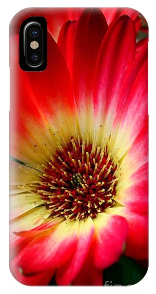 Flowers Are Happiness IPhone Case