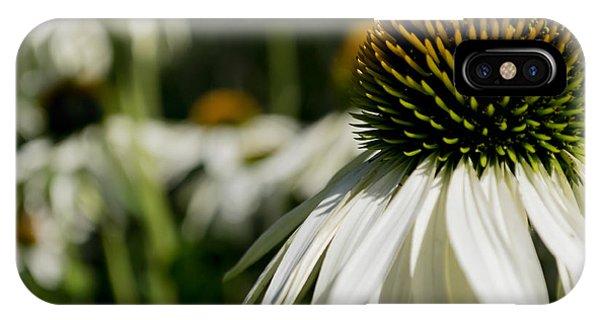 Flowers - Echinacea White Swan IPhone Case