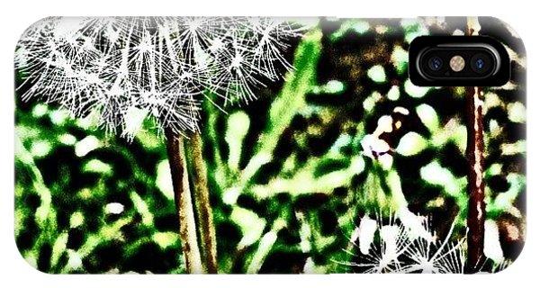 Petals iPhone Case - Dandelions  by Jason Michael Roust