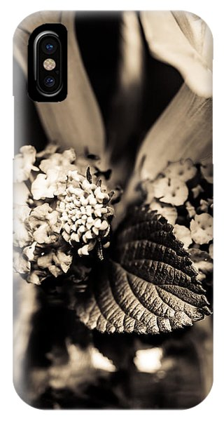 Close Focus Floral iPhone Case - Flowers In A Jar by Marco Oliveira
