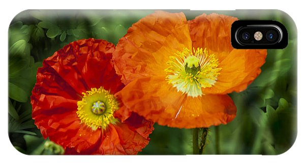 Flowers In Kodakchrome IPhone Case