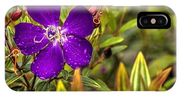 Flowers Love Water IPhone Case