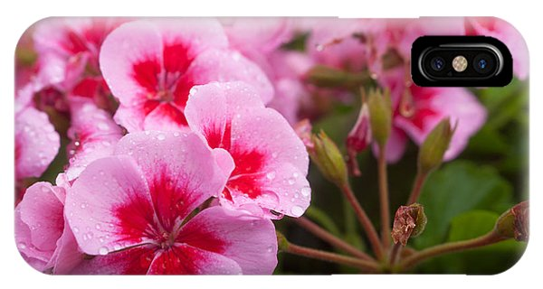 Flowers On A Rainy Sunday Afternoon IPhone Case