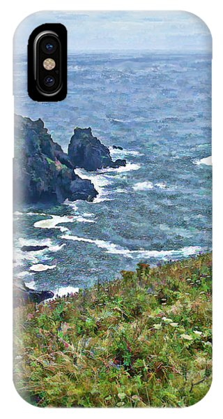 Flowers On Isle Of Guernsey Cliffs IPhone Case