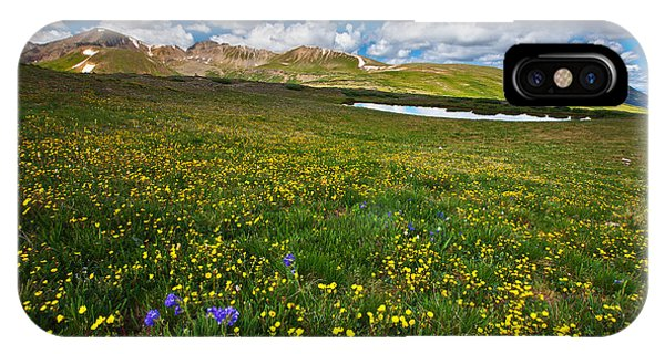 Alpine Meadows iPhone Case - Flowers On The Divide by Darren  White