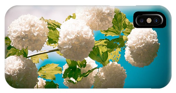 Flowers With Blue Sky IPhone Case