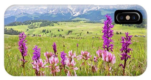 Monocotyledon iPhone Case - Flowery Alpine Meadow by Bob Gibbons