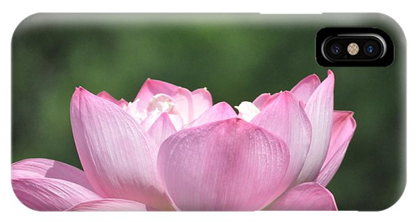 Flowing Lotus IPhone Case