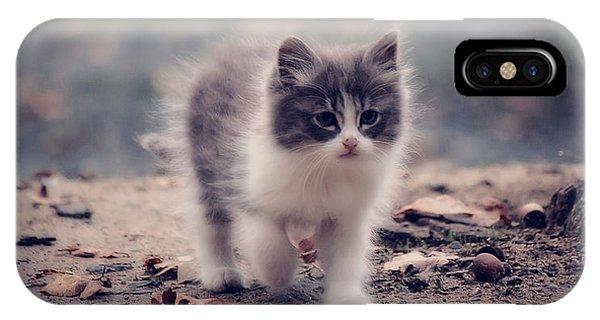 Fluffy Cuteness IPhone Case