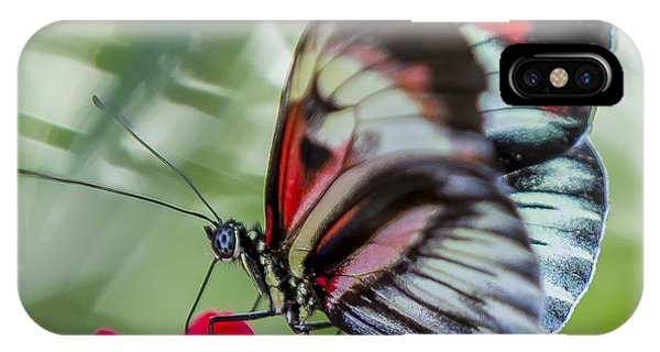 Fluttering Piano Key Butterfly IPhone Case