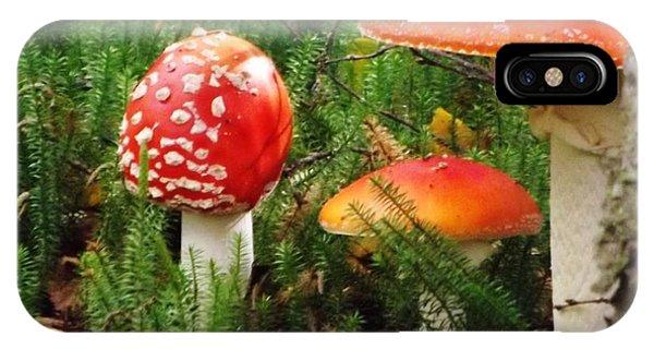 Fly Agaric Mushroom IPhone Case
