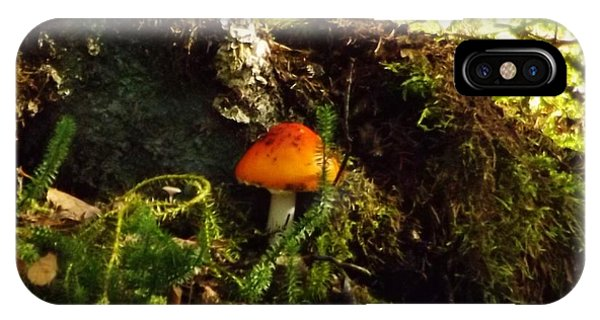 Fly Agaric Mushroom On Forest Floor IPhone Case