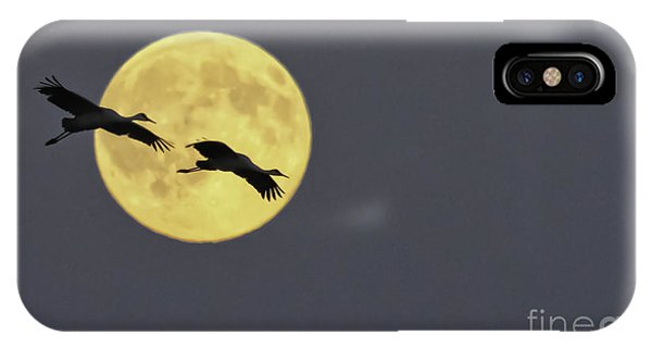 Moonlight Flight IPhone Case