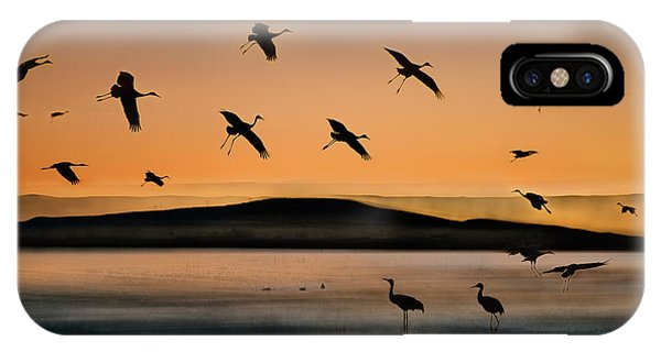 Fly-in At Sunset IPhone Case