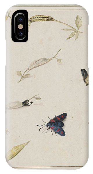 Chrysalis iPhone Case - Fly Life Stages by Natural History Museum, London/science Photo Library