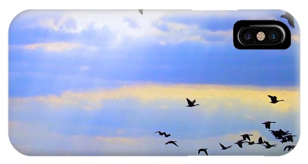Buy Art Online iPhone Case - Fly Like The Wind by Robyn King