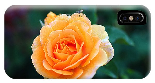 Fly On A Rose IPhone Case