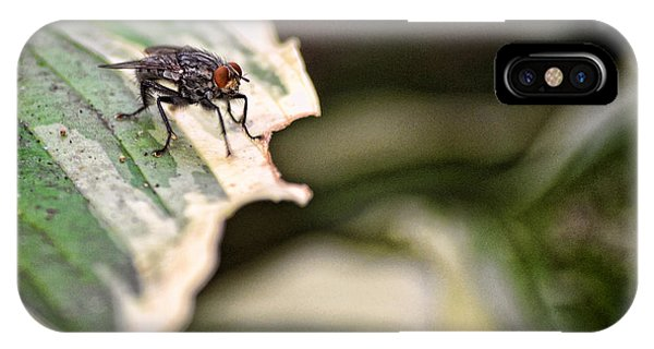 Fly On Leaf 2 IPhone Case
