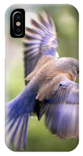 Flying Bluebird IPhone Case