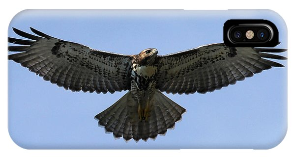 Flying Free - Red-tailed Hawk IPhone Case