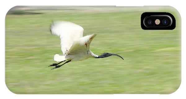 Flying Ibis IPhone Case