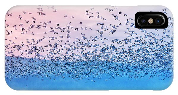 Departure iPhone Case - Flying In The Fogging Morning by Rob Li