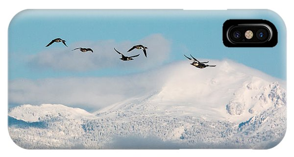 Flying North IPhone Case