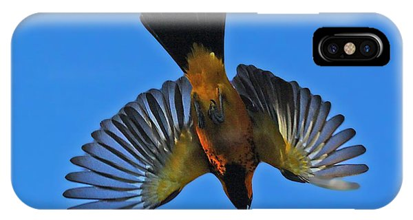 Flying Spot-breasted Oriole IPhone Case