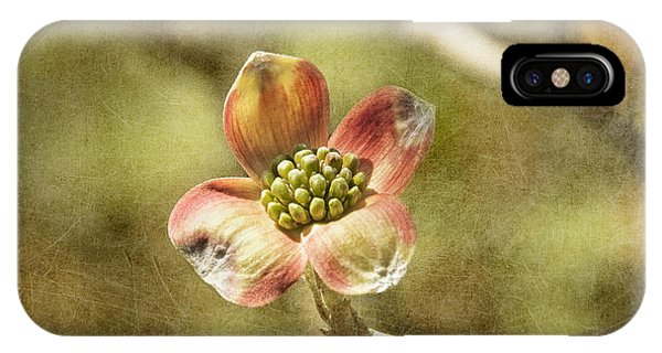 Focus On Dogwood IPhone Case
