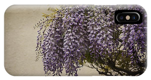 Focus On Wisteria IPhone Case