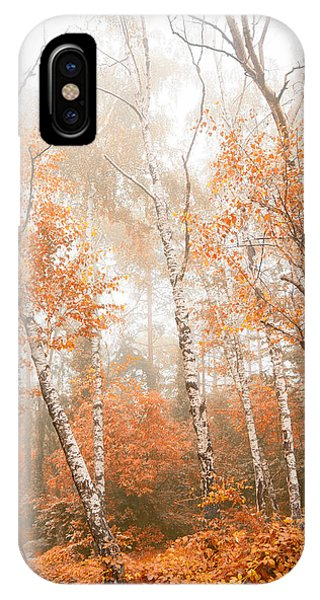 Foggy Autumn Aspens IPhone Case