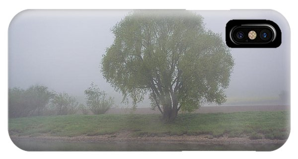 Foggy Elbe Tree IPhone Case