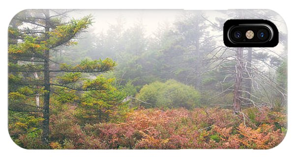 Michael iPhone Case - Foliage Fog Panorama by Michael Ver Sprill