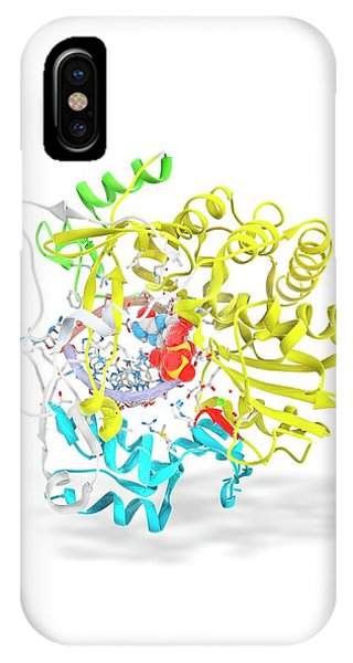 Synthesis iPhone Case - Foot-and-mouth Disease Virus Drug Complex by Ramon Andrade 3dciencia
