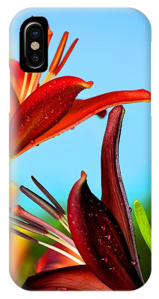For The Love Of Lillies IPhone Case